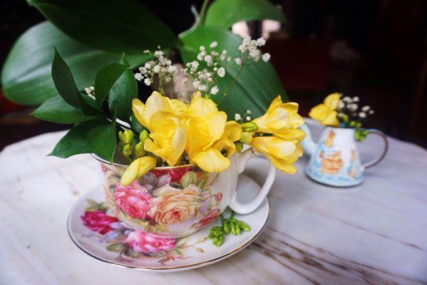 SpringTeas